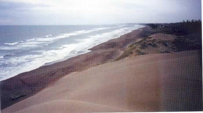 Playas De Chachalacas